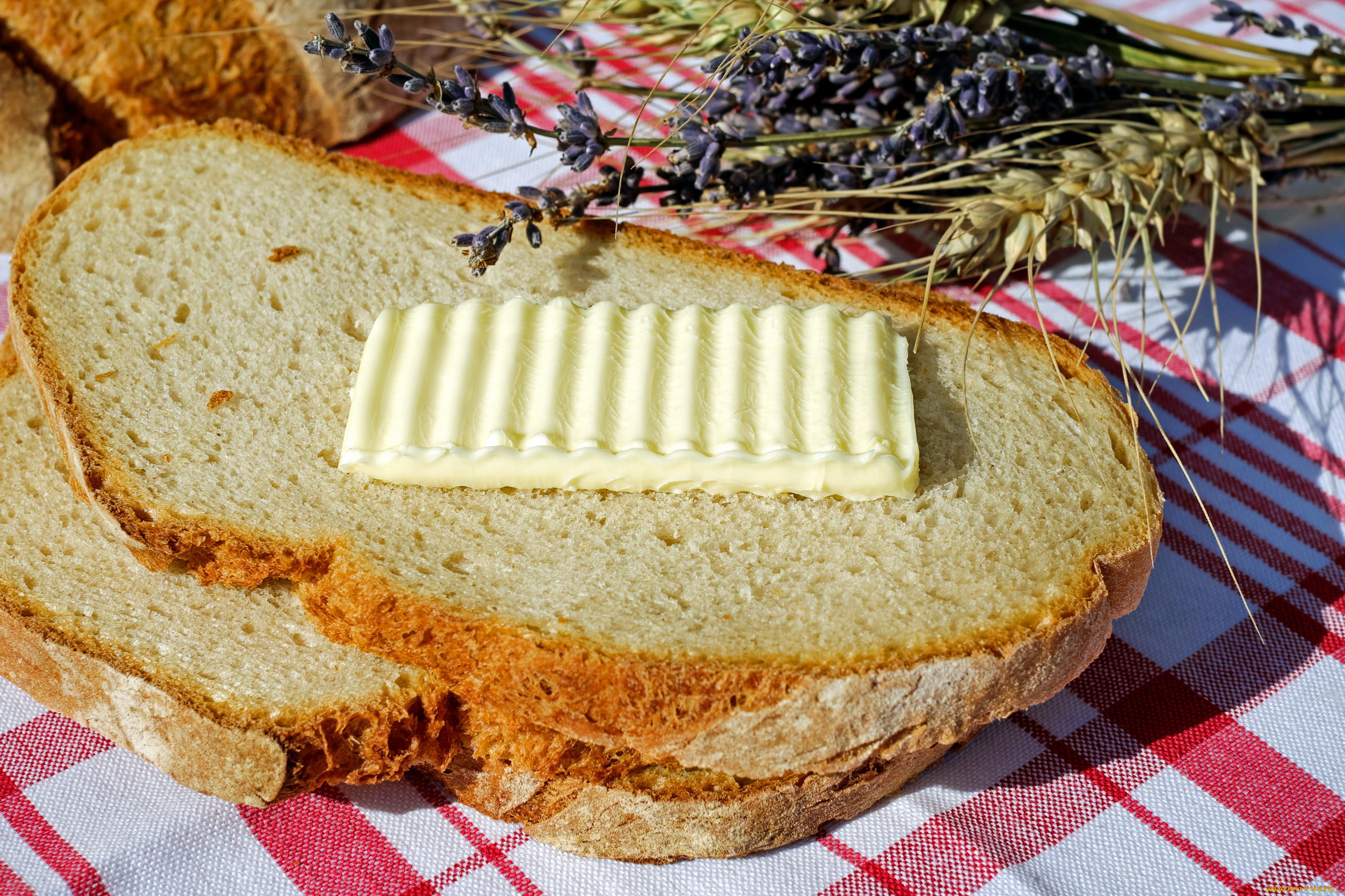 открытка хлеб с маслом даже